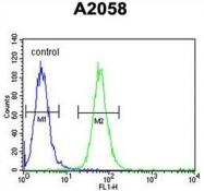 AP50029PU-N - ABHD14B