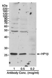 AP05722PU-N - CBX1