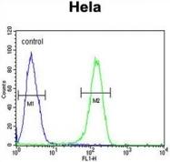 AP50087PU-N - Adenylate cyclase type 4