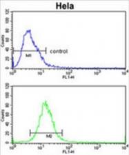 AP50091PU-N - Alcohol dehydrogenase 6 / ADH6