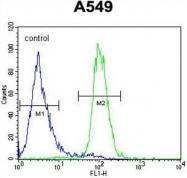 AP50176PU-N - Angiopoietin-2