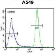 AP54561PU-N - WFDC12 / WAP2