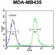AP54517PU-N - VPS52