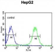AP50262PU-N - Arylsulfatase I