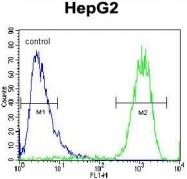 AP50301PU-N - ATP synthase subunit d