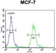 AP50316PU-N - AVP-induced protein 1