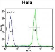 AP50402PU-N - Betacellulin