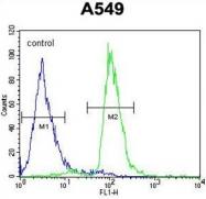 AP50446PU-N - C12orf48