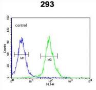 AP54343PU-N - Tryptophan 5-hydroxylase 2 (TPH2)