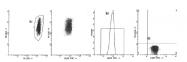 AM39024FC-N - CD59