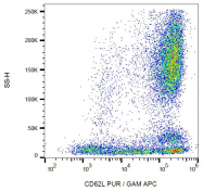AM03090FC-N - CD62L / L-Selectin