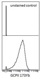 AM03114RP-N - PSMA / FOLH1