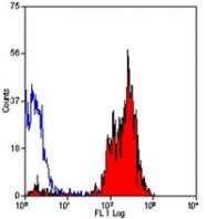 AM05560PU-N - CD46 / MCP