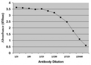 AM05657PU-N - Dehydroepiandrosterone / DHEA