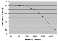 AM05658PU-N - Dehydroepiandrosterone / DHEA