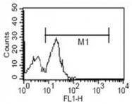 AM06089PU-N - CD14