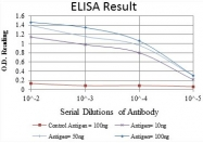 AM06633SU-N - CD105 / Endoglin