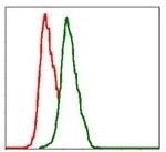 AM06734PU-N - CD29 / Integrin beta-1