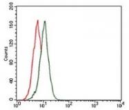 AM06755PU-N - Fibronectin
