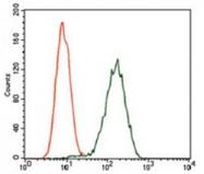 AM06776PU-N - Glypican-3 / GPC3