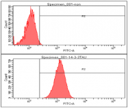 AM09060PU-N - 14-3-3 protein theta