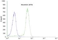 AM09111PU-N - Mesothelin