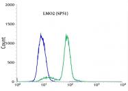 AM09341PU-N - Rhombotin-2