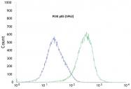 AM09343PU-N - PIK3R1 / GRB1
