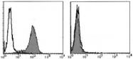 AM26426AF-N - CD178 / Fas Ligand