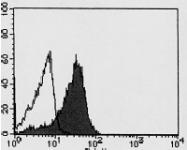 AM26432AF-N - GPM6A