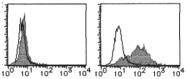 AM26441RP-S - IL1RL1 / ST2