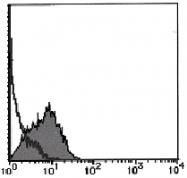 AM26451FC-N - CD193 / CCR3