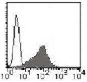 AM26451RP-N - CD193 / CCR3