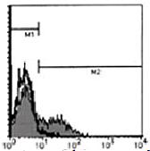 AM26474AF-N - CD195 / CCR5