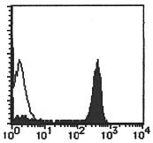 AM26477FC-N - CD9