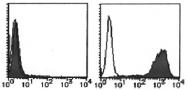 AM26479RP-N - CD279 / PD1