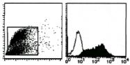 AM26495AF-N - Lactadherin