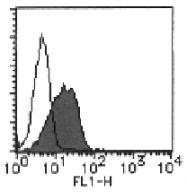 AM26504FC-N - CD155 / PVR