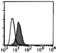 AM26506FC-N - CD300A / CMRF35H