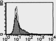 AM26514AF-N - Galectin-9