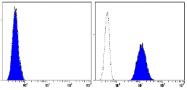 AM26516AF-N - CD93 / C1QR1