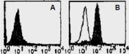 AM26523AF-N - CD284 / TLR4