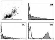 AM26546RP-N - CD9
