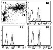 AM26547FC-S - CD46 / MCP