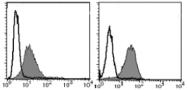 AM26548AF-N - CD50 / ICAM3