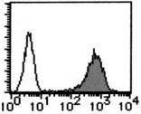 AM26551AF-N - CD59