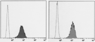 AM26551FC-S - CD59
