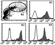 AM26554AF-N - CD298 / ATP1B3