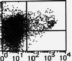 AM26635AF-N - CD11c