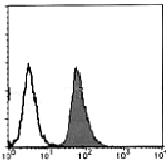 AM26668PU-N - CD95 / FAS